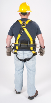 WorkmanHarnesses_back