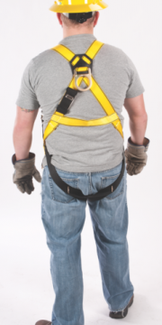 WorkmanHarnesses_second